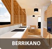 BERRIKANO-ICONO